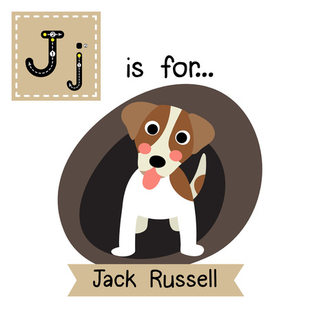learning english: J letter tracing. Jack Russell Terrier dog. Cute children zoo alphabet flash card. Funny cartoon animal. Kids abc education. Learning English vocabulary. Vector illustration. Illustration