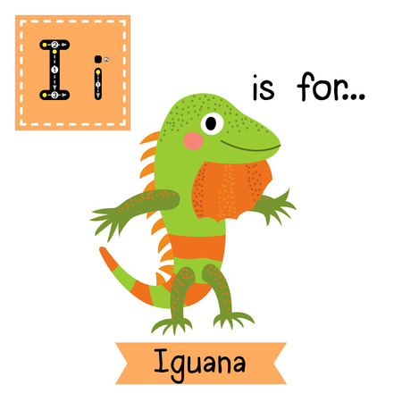 i kids: I letter tracing. Iguana lizard reptile standing on two legs. Cute children zoo alphabet flash card. Funny cartoon animal. Kids abc education. Learning English vocabulary. Vector illustration. Illustration