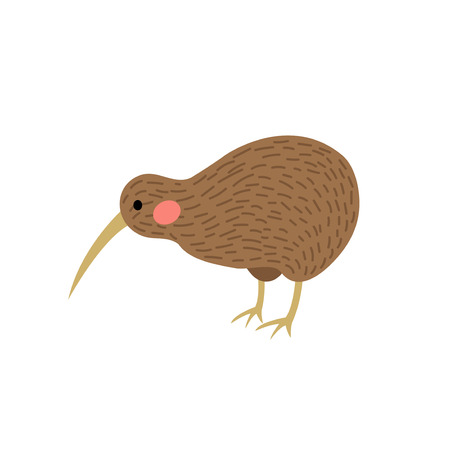 Kiwi bird animal cartoon character. Isolated on white background. Vector illustration. Illustration
