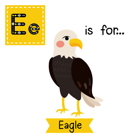 E letter tracing. Standing Eagle. Cute children zoo alphabet flash card. Funny cartoon animal. Kids abc education. Learning English vocabulary. Vector illustration.