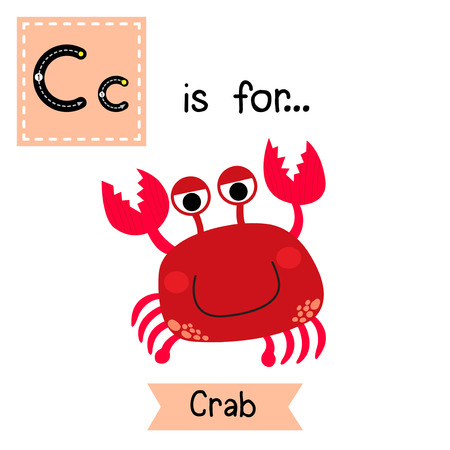 learning english: C letter tracing. Happy red Crab. Cute children zoo alphabet flash card. Funny cartoon animal. Kids abc education. Learning English vocabulary. Vector illustration.vocabulary. Vector illustration. Illustration
