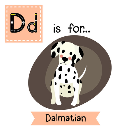 dalmatian: D letter tracing. Sitting Dalmatian. Cute children zoo alphabet flash card. Funny cartoon animal. Kids abc education. Learning English vocabulary. Vector illustration.