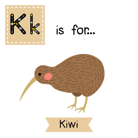 learning english: K letter tracing. Kiwi bird. Cute children zoo alphabet flash card. Funny cartoon animal. Kids abc education. Learning English vocabulary. Vector illustration.