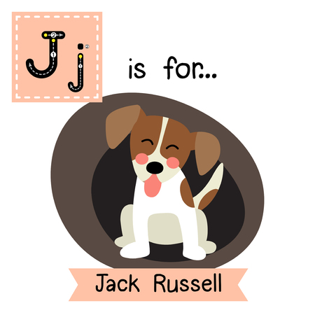 cute children: J letter tracing. Sitting Jack Russell Terrier dog. Cute children zoo alphabet flash card. Funny cartoon animal. Kids abc education. Learning English vocabulary. Vector illustration.