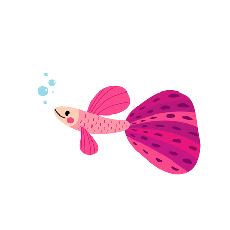 rainbow fish: Pink Guppy fish animal cartoon character. Isolated on white background. Vector illustration. Illustration