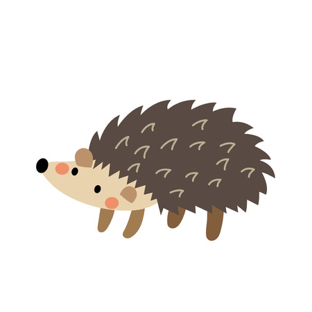 spiked: Hedgehog animal cartoon character. Isolated on white background. Vector illustration.