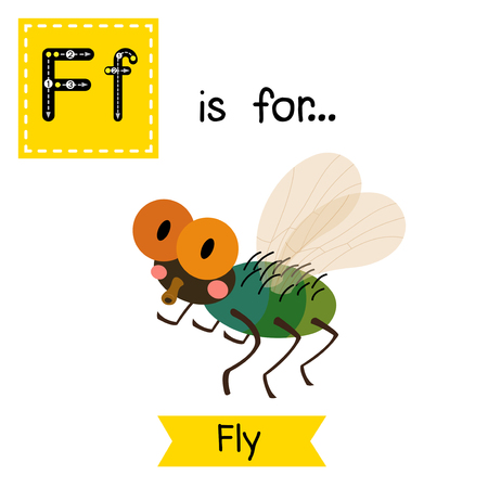 learning english: F letter tracing. Fly. Cute children zoo alphabet flash card. Funny cartoon animal. Kids abc education. Learning English vocabulary. Vector illustration.