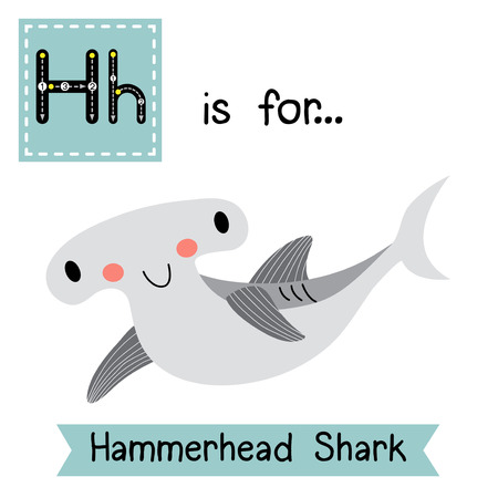 hammerhead: H letter tracing. Hammerhead Shark. Cute children zoo alphabet flash card. Funny cartoon animal. Kids abc education. Learning English vocabulary. Vector illustration.