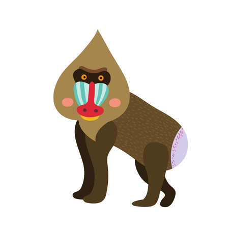 Mandrill animal cartoon character. Isolated on white background. Vector illustration.
