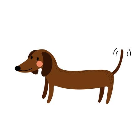 Dachshund animal cartoon character. Isolated on white background. Vector illustration.