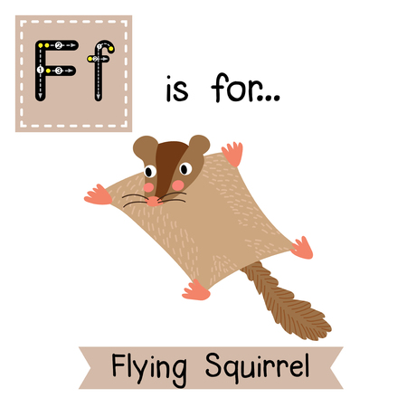 F letter tracing. Flying Squirrel. Cute children zoo alphabet flash card. Funny cartoon animal. Kids abc education. Learning English vocabulary. Vector illustration.