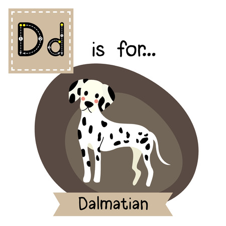 dalmatian: D letter tracing. Standing Dalmatian. Cute children zoo alphabet flash card. Funny cartoon animal. Kids abc education. Learning English vocabulary. Vector illustration.