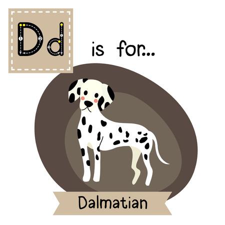 lettre D de traçage. Dalmatien debout. Mignon enfants zoo carte alphabet flash. animal de bande dessinée drôle. Les enfants d'éducation abc. Apprendre le vocabulaire anglais. Vector illustration.