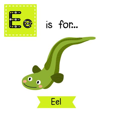 E letter tracing. Green Eel. Cute children zoo alphabet flash card. Funny cartoon animal. Kids abc education. Learning English vocabulary. Vector illustration.