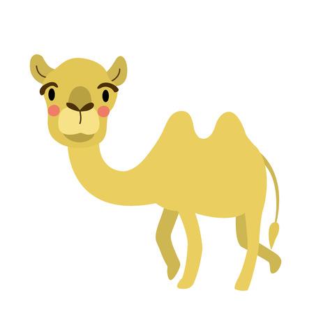 Bactrian Camel animal cartoon character. Isolated on white background. illustration.