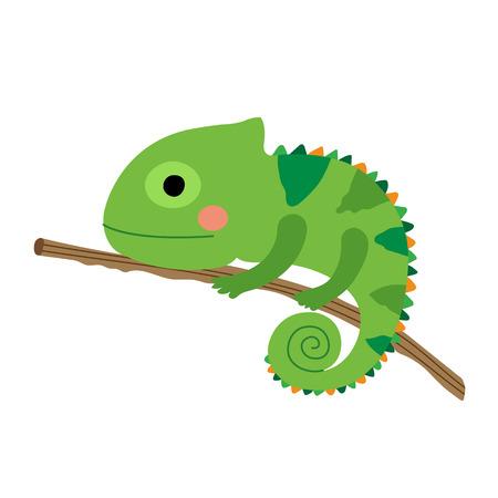 chamaeleo: Chameleon climbing on branch animal cartoon character. Isolated on white background. illustration.