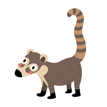 Standing Coati animal cartoon character. Isolated on white background. illustration. Illustration