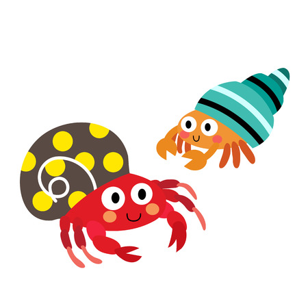 Colorful Hermit Crab animal cartoon character. Isolated on white background. illustration.