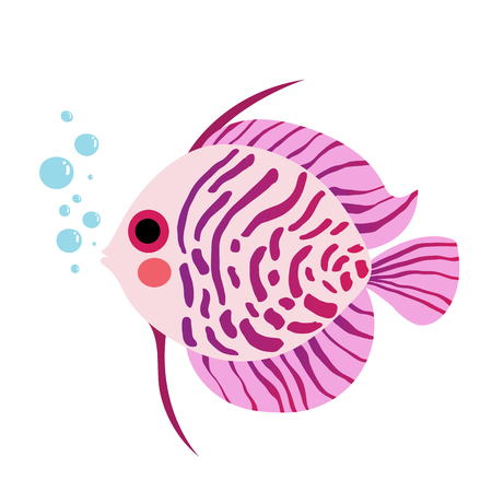 pompadour fish: Purple Discus Fish animal cartoon character. Isolated on white background.  illustration.