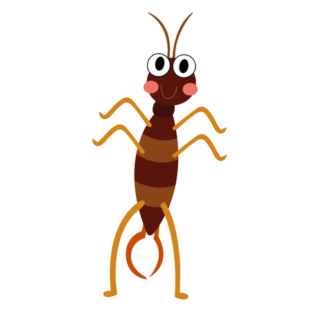 Earwig standing on two legs animal cartoon character. Isolated on white background. illustration. Illustration
