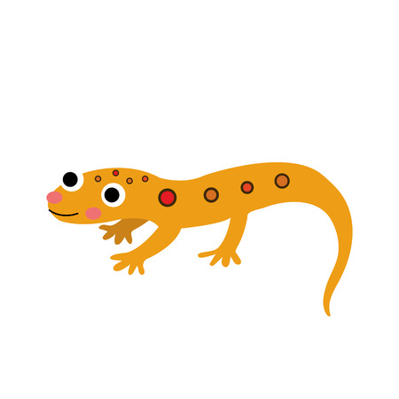 newt: Eastern Red-spotted Newt animal cartoon character. Isolated on white background. illustration.