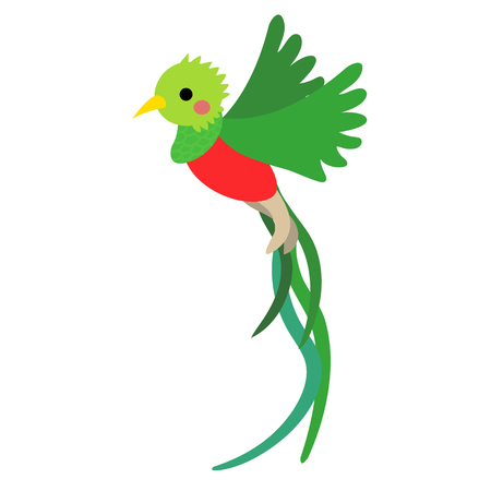 Flying Quetzal bird animal cartoon character. Isolated on white background. illustration.