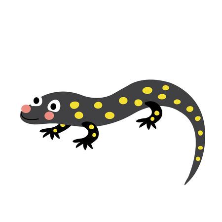 Salamander animal cartoon character. Isolated on white background. illustration. Illustration