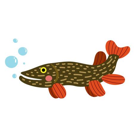 Pike fish animal cartoon character. Isolated on white background. illustration.