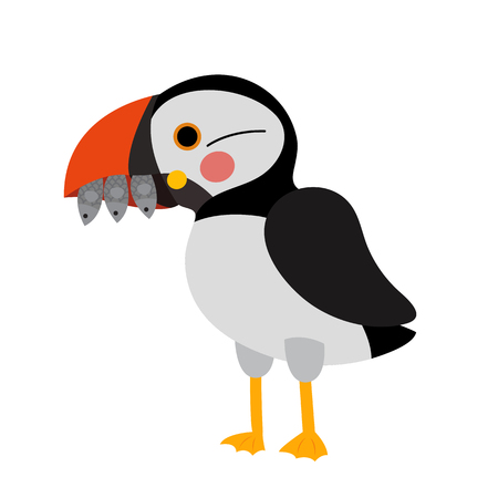 Puffin bird animal cartoon character. Isolated on white background. illustration. Illustration
