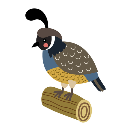 Quail bird perching on wood log animal cartoon character. Isolated on white background. illustration.
