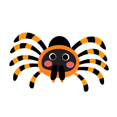 tarantula: Red Knee Tarantula animal cartoon character. Isolated on white background. illustration.