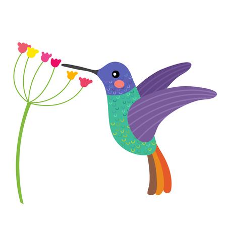 Goldener tailed Saphir Hummingbird immer Nektar aus einer Blume Tier Cartoon-Figur. Isoliert auf weißen Hintergrund. Illustration.