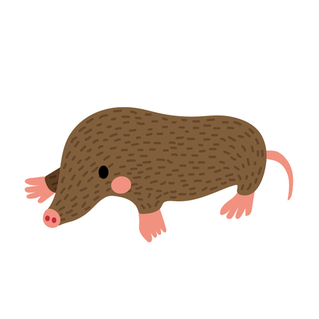 Mole animal cartoon character. Isolated on white background. illustration. Illustration