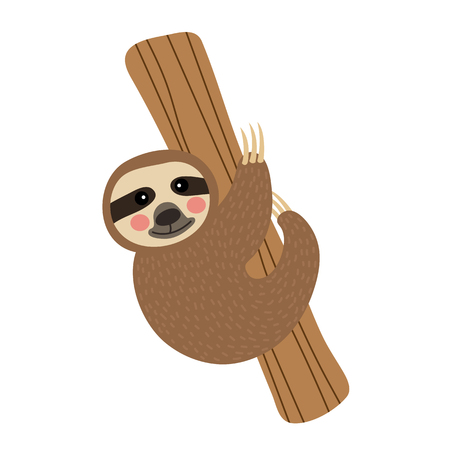 indolence: Three-toed Sloth hanging on tree animal cartoon character. Isolated on white background. illustration.