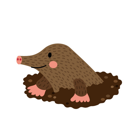 Mole Digging Out of the Dirt animal cartoon character. Isolated on white background. illustration.