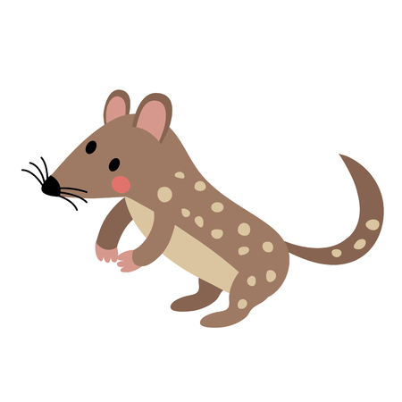 maculatus: Standing Quoll animal cartoon character. Isolated on white background. illustration.