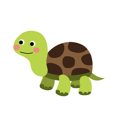 Turtle animal cartoon character. Isolated on white background. illustration.
