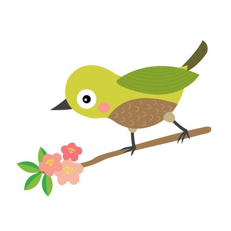 Uguisu bird animal cartoon character. Isolated on white background. illustration. Illustration