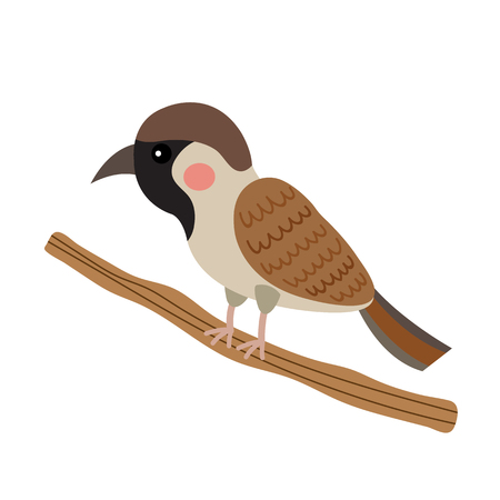 House Sparrow bird perching branch animal cartoon character. Isolated on white background. illustration. Illustration
