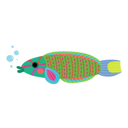humphead: Lunare or Lyretail Wrasse fish animal cartoon character. Isolated on white background. illustration