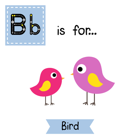 cute children: B letter tracing. Standing colorful Bird. Cute children zoo alphabet flash card. Funny cartoon animal. Kids abc education. Learning English vocabulary. illustration.