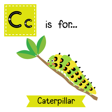 C letter tracing. Caterpillar crawling on the branch. Cute children zoo alphabet flash card. Funny cartoon animal. Kids abc education. Learning English vocabulary. illustration.