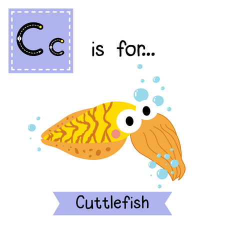 C letter tracing.Yellow Cuttlefish. Cute children zoo alphabet flash card. Funny cartoon animal. Kids abc education. Learning English vocabulary. illustration.