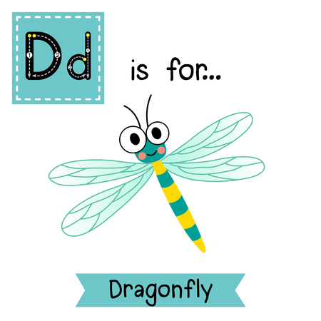 cute children: D letter tracing. Dragonfly insect. Cute children zoo alphabet flash card. Funny cartoon animal. Kids abc education. Learning English vocabulary. illustration. Illustration