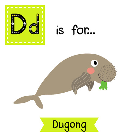 D letter tracing. Dugong eating seagrass. Cute children zoo alphabet flash card. Funny cartoon animal. Kids abc education. Learning English vocabulary. illustration.