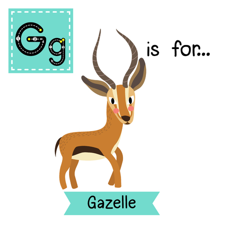 G letter tracing. Standing Gazelle. Cute children zoo alphabet flash card. Funny cartoon animal. Kids abc education. Learning English vocabulary. illustration.