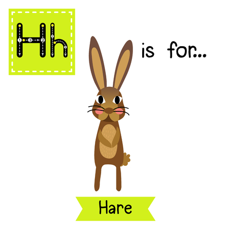 H letter tracing. Standing Hare. Cute children zoo alphabet flash card. Funny cartoon animal. Kids abc education. Learning English vocabulary. illustration.