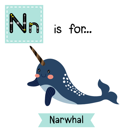 N letter tracing. Dark blue Narwhal. Cute children zoo alphabet flash card. Funny cartoon animal. Kids abc education. Learning English vocabulary.  illustration. Illustration