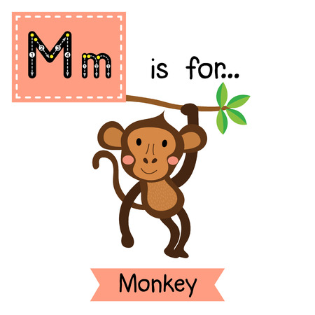 M letter tracing. Monkey. Cute children zoo alphabet flash card. Funny cartoon animal. Kids abc education. Learning English vocabulary. illustration. Illustration
