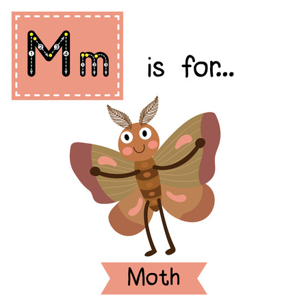 vocabulary: M letter tracing. Moth. Cute children zoo alphabet flash card. Funny cartoon animal. Kids abc education. Learning English vocabulary. illustration. Illustration